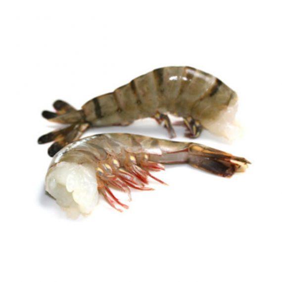тигровая креветка бг2 купить в СПБ с доставкой